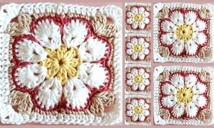 African Flower Square Free Crochet Pattern Your Crochet