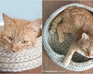 Tabby Chic Cat Bed Free Crochet Pattern