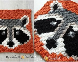 Racoon C2C Square Blanket Free Crochet Pattern