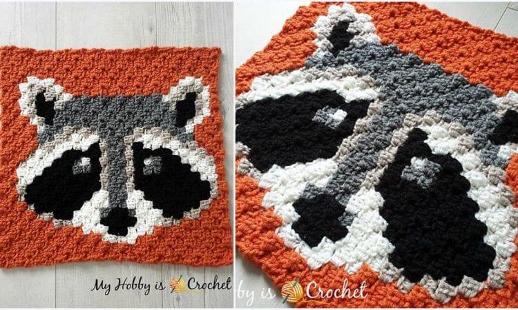 Racoon C2C Square Blanket Free Crochet Pattern